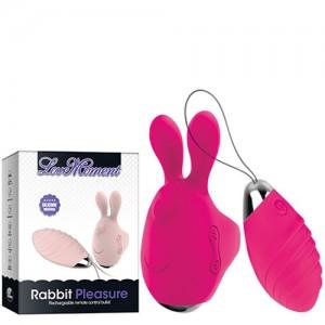 Estimulador Coelho com Aquecimento Controle Wireless 7 Vibrações - Smiling Bunny Love Moment (YW4112)